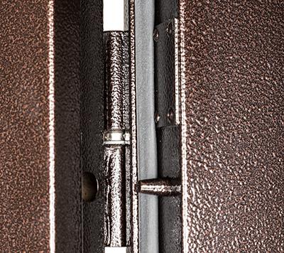 Дверь металлическая ПРОФИ